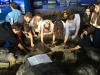 Irland_Aquarium